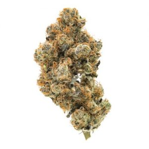 buy banana OG kush