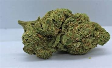 Apple-Fritter-strain-nightcokesupplies.com