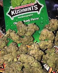 Kush-Mintz-(Backpackboyz)-nightcokesupplies.com