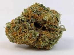 Mac-1-Strain-nightcokesupplies.com